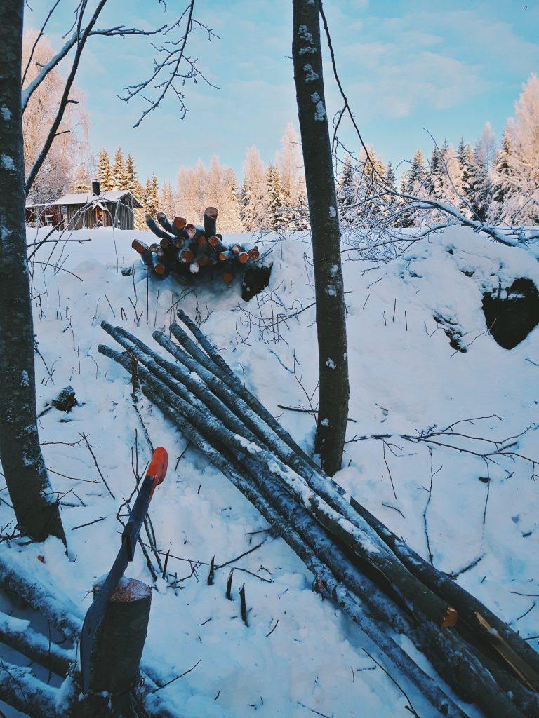 leppa ranka kasa alkutalvi marraskuu puiden kerays