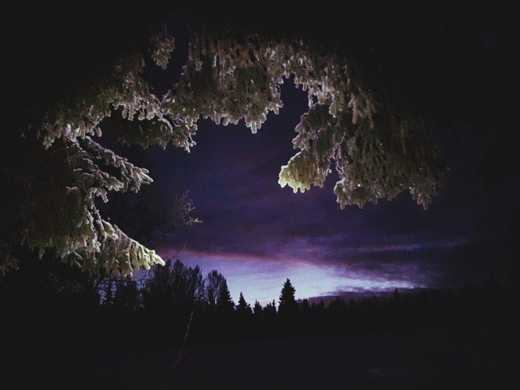 talvinen taivas