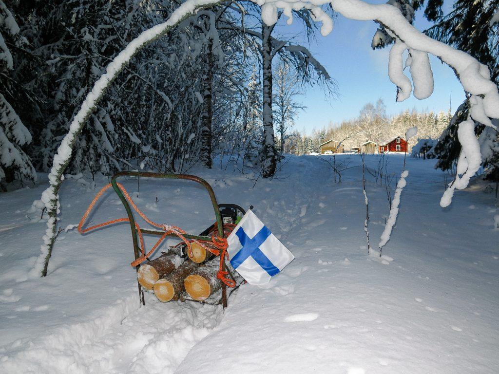 suomen lippu kelkka reki hanki kirkas kevat puukuorma puiden tuonti veto metsasta