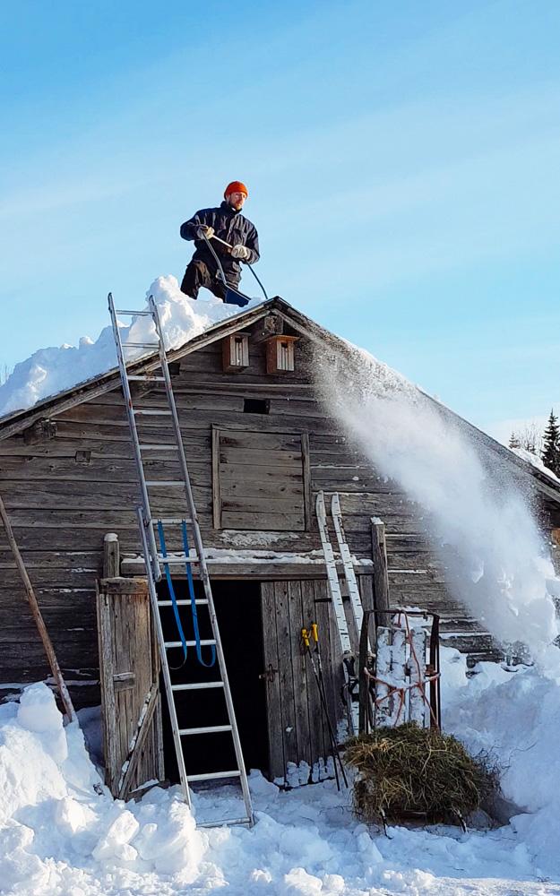 lumen-pudotus-katolta-sotkamo-talvi-aurinko-paistaa-navetan-katolta-mokkitalkkari-talonmies-syrjakyla