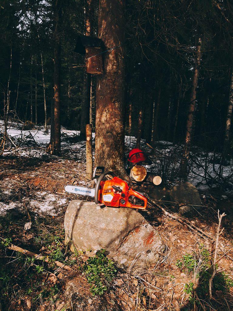 husqvarna-543-xp-moottorisaha-chainsaw-kivella-vanha-kuusi-harvennus-mustikka-vanha-pelto-kivi-kainuu-sotkamo-2