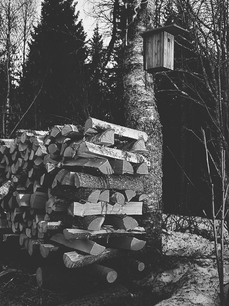 linnunpontto-halkopino-firewood-bird-nest-box