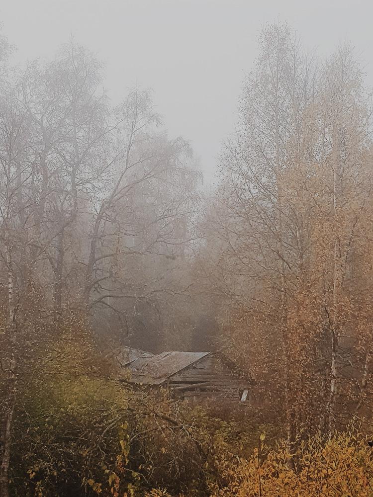 melankolinen-maisema-syksy-talon-rama-sortunut-hirsi-autio-maaseutu – kopio
