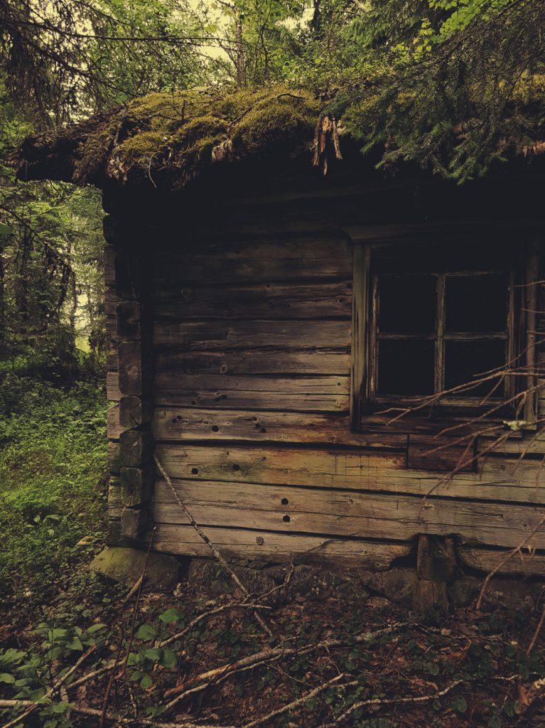 metsa-pirtti-torppa-piilopirtti-sauna-turvekatto-parekatte-hirsi-runko-metsassa-rollin-mokki-vanha-historia-arvoituksellinen