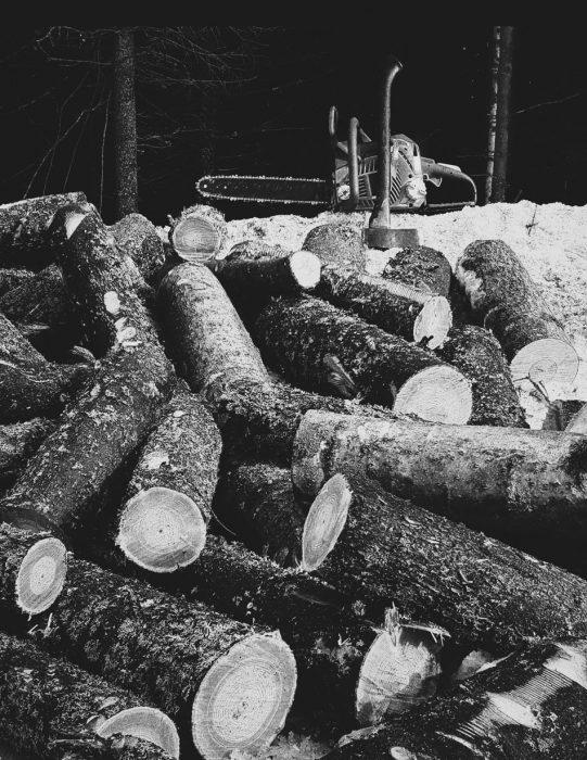 moottorisaha-kirves-mustavalkoinen-polkky-polttupuu-metsa-firewood-stumps-klapi-halonta-katkominen-pilke-541x700