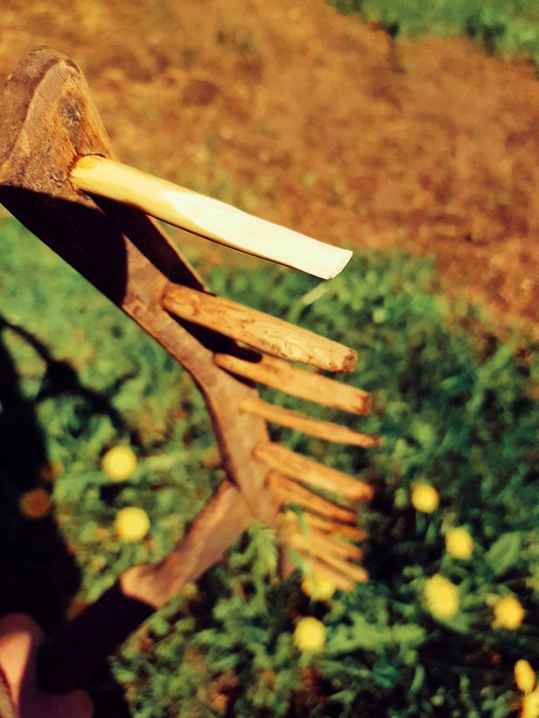 puuharava-vanha-lehti-heina-pelto-heinanteko-hara-puutappi-puinen-pihlajasta-vanhat-maatalous-tyokalut-kasvimaa