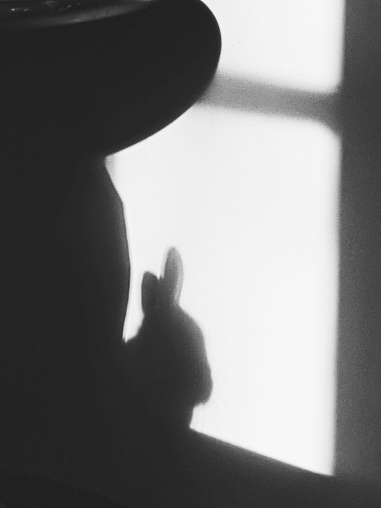 shadow-animal-rabbit-janis-varjoelain-varjo-seinalla