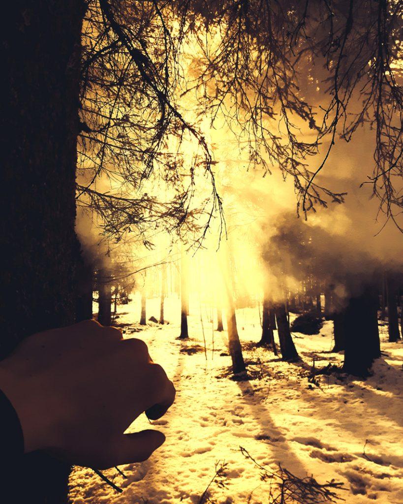 usvametsa-savua-metsassa-kuusikko-nuotion-savu-auringon-valo-smoke-in-the-woods-forest