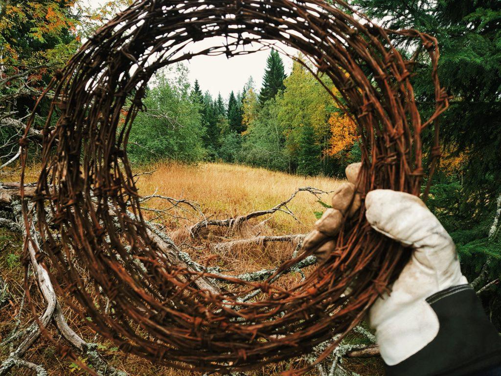 piikkilanka-kera-ruosteinen-vanha-niitty-pelto-syksylla-ruskainen-ruskea-heinittynyt-pientila-historia-valokuvaus-sommittelu-rajaus-luontokuva-kainuu-sotkamo