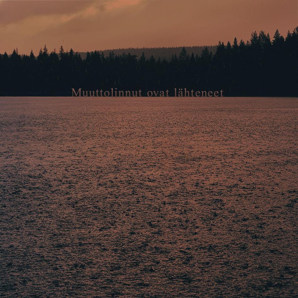 sade-suolampi-taustalla-vaara-sade-ropisee-veden-pinnalla-pisaroita-maisema-valokuvaus-kainuu-sotkamo-muuttolinnut-lahteneet-syysmuutto-autius