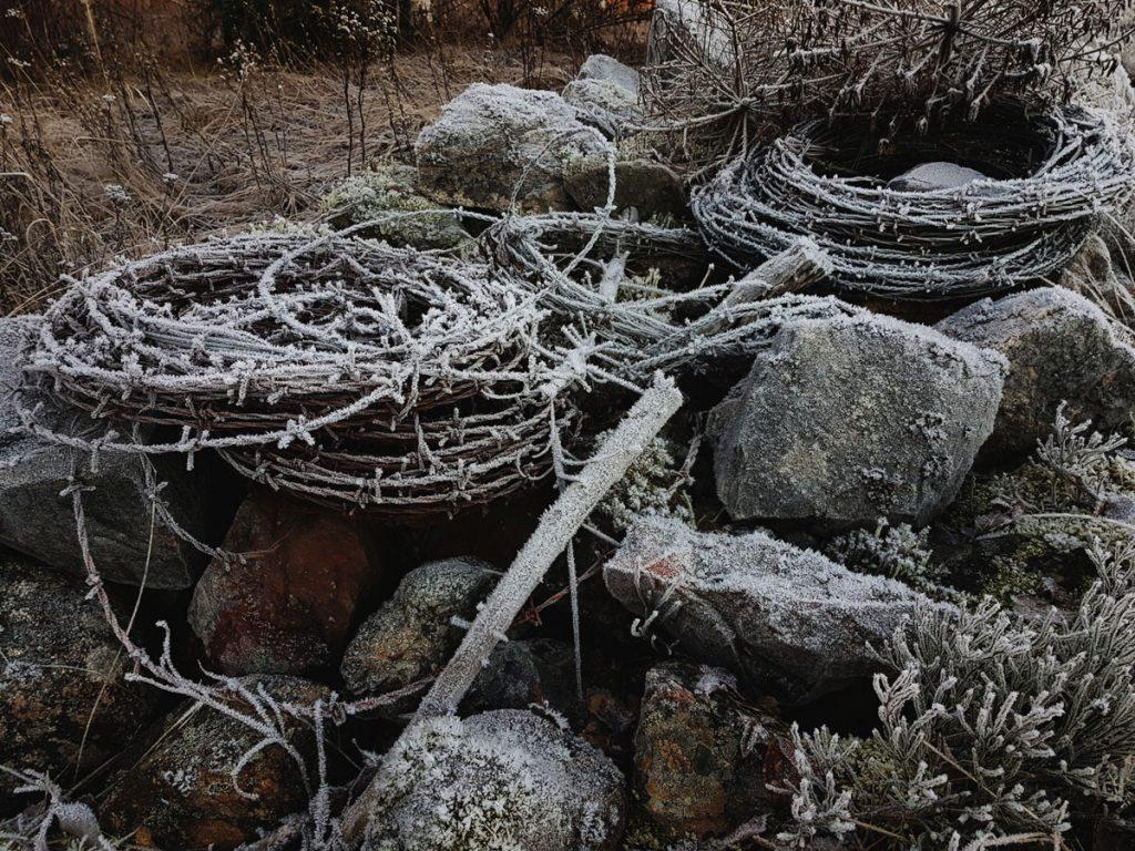 kivi-roonio-kasa-pellon-reunalla-kuurassa-jaannos-kulttuuri-maisema-historia-perinne-kivi-aita-piikkilanka-kera