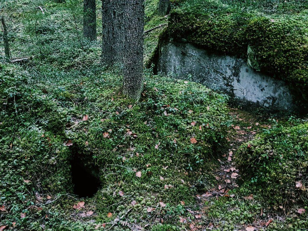 metsa-sammaloitunut-kivi-lohkare-luola-pesan-suu-aukko-kolo