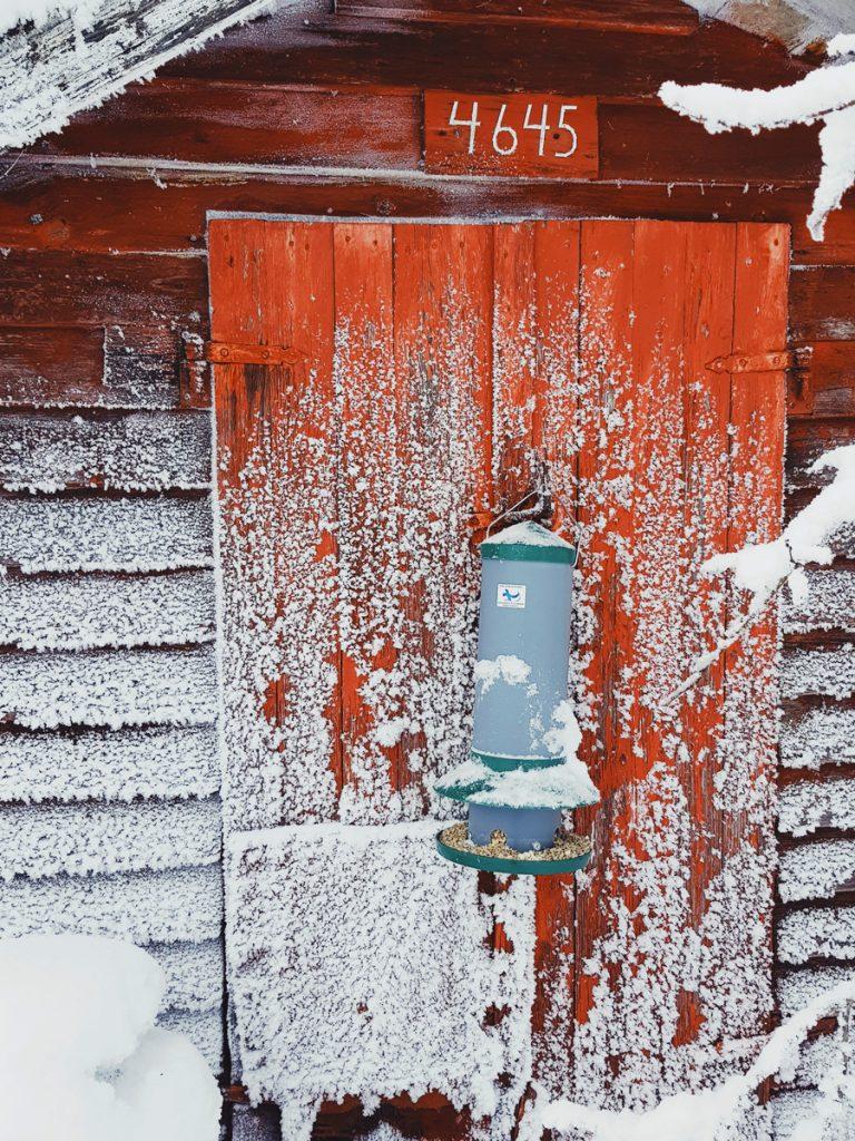 lintujen-ruokinta-automaatti-maitolaiturilla-maitolaituri-vanha-kuurainen-lumessa