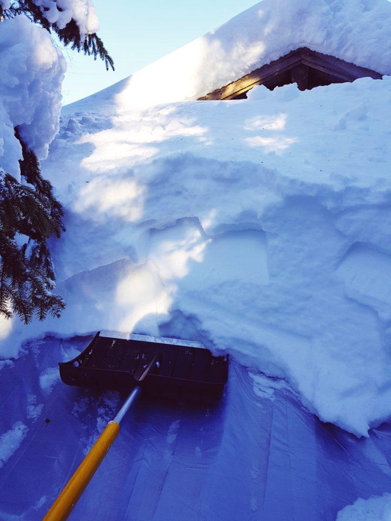 lumen-pudotus-katolta-sotkamon-lumisin-paikka-vaara-talvivaara-naulavaara-lumikuorma-fiskar-lapio-kevat-talvi