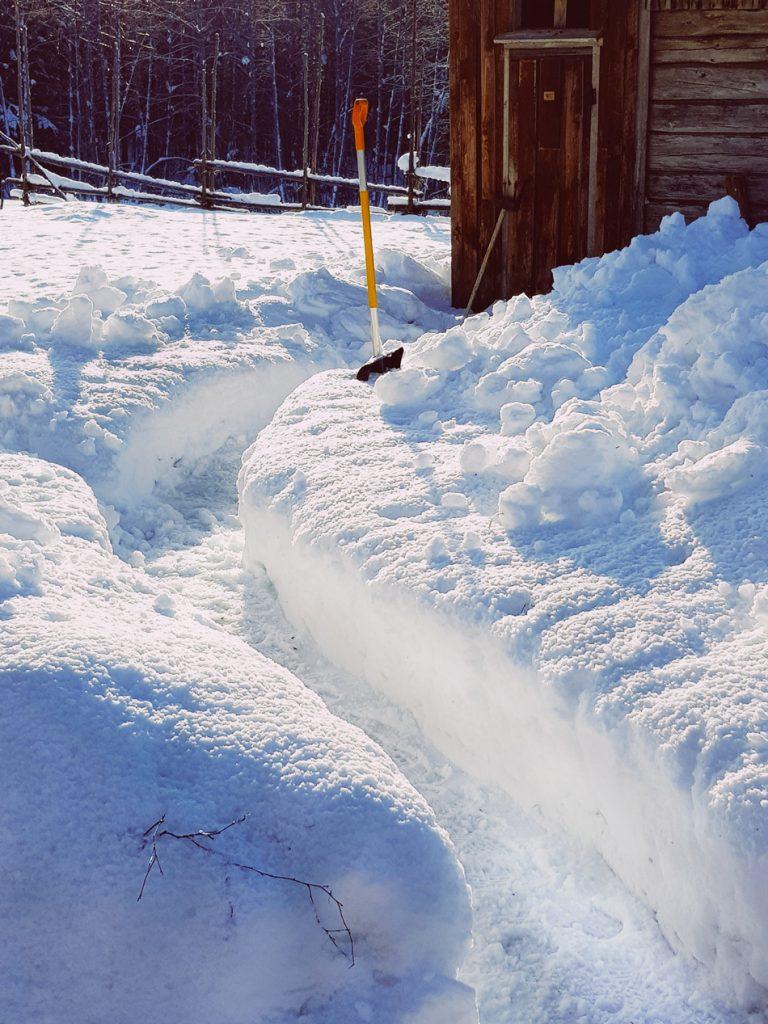 lumi-polku-lumessa-lapioitu-maalais-pihapiiri-miljoo-ulkovessa-talvella-kevat-aurinko