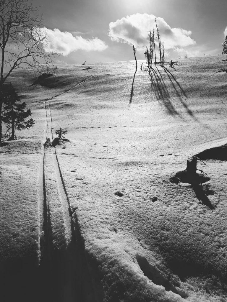 latu-mustavalkoinen-kohti-aurinkoa-rinne-paljas-kiiltaa-auringossa-kevathanki-hiljainen-maisema