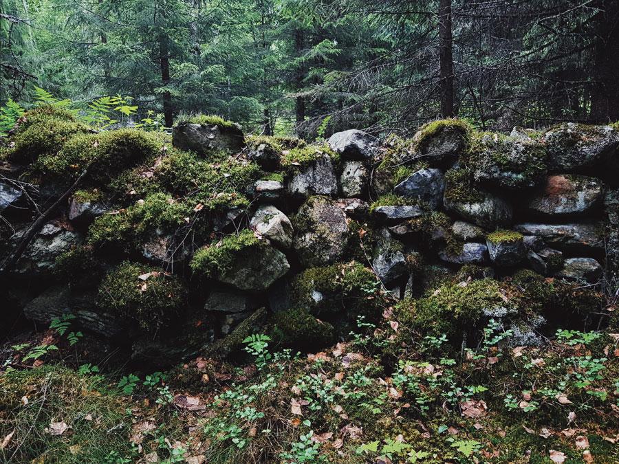 vanhaa-sammaloitunutta-kiviaitaa-pelto-kivi-roykkio