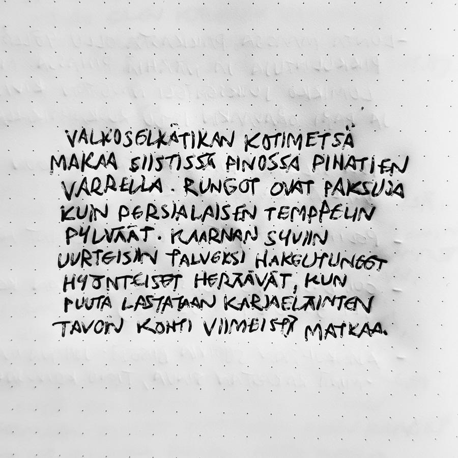 valkoselka-tikka-kotimetsa-paatehakkuu-runo-tuokiokuva-metsa-kaytto