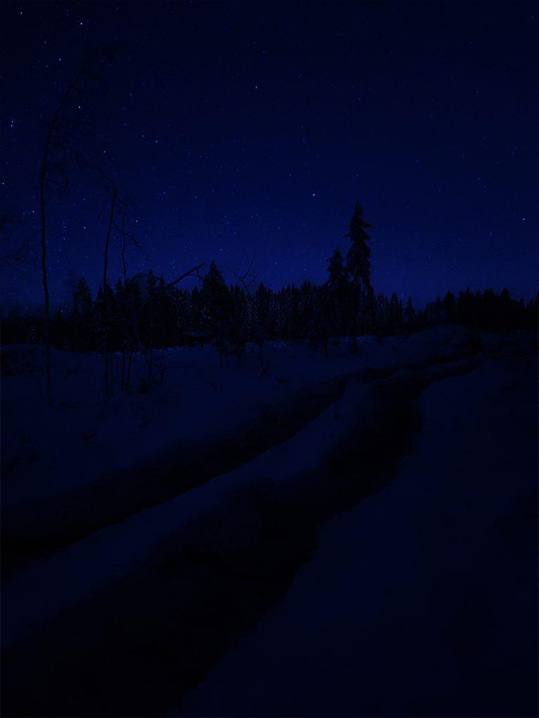 sininen-hetki-hakattu-metsa-tahtitaivas-tumma-maisema-avohakkuu-kylma-metsatalous-talvella